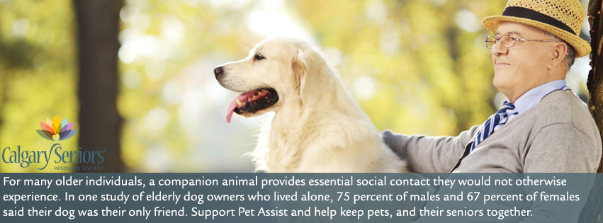 Pet Assist – Helping pets, and their seniors, stay together