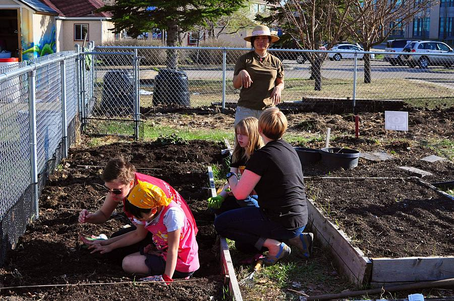 Planting Seeds for an Inclusive Community Garden Program