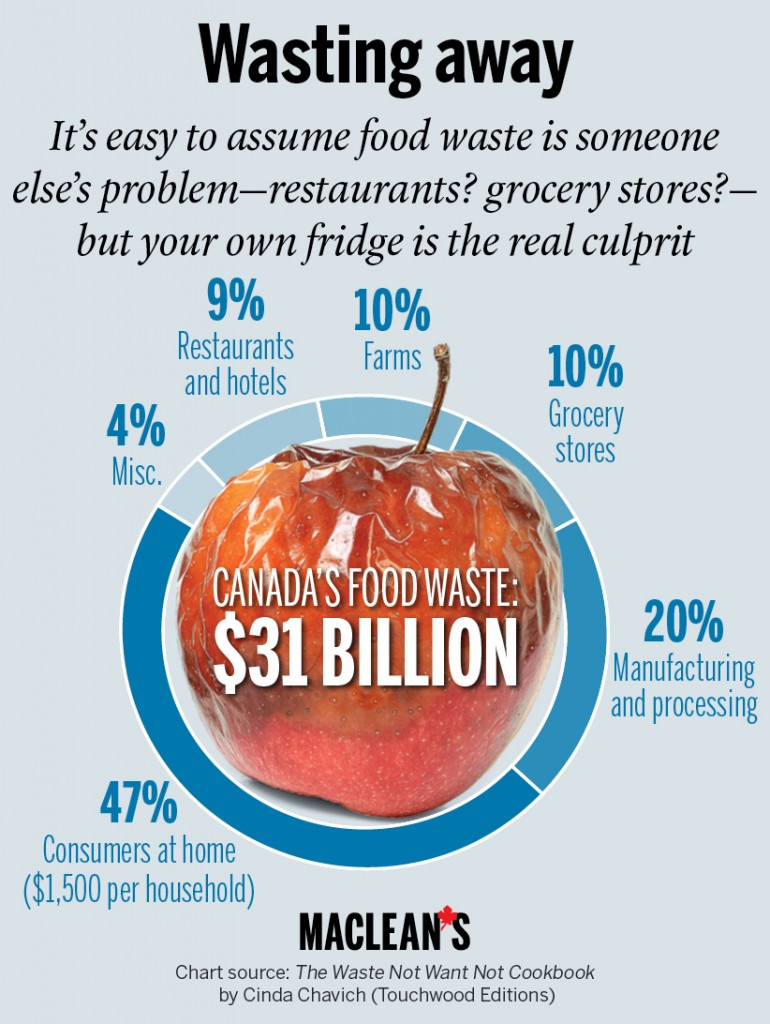 Grocery Economics & Household Food Waste Reduction Study