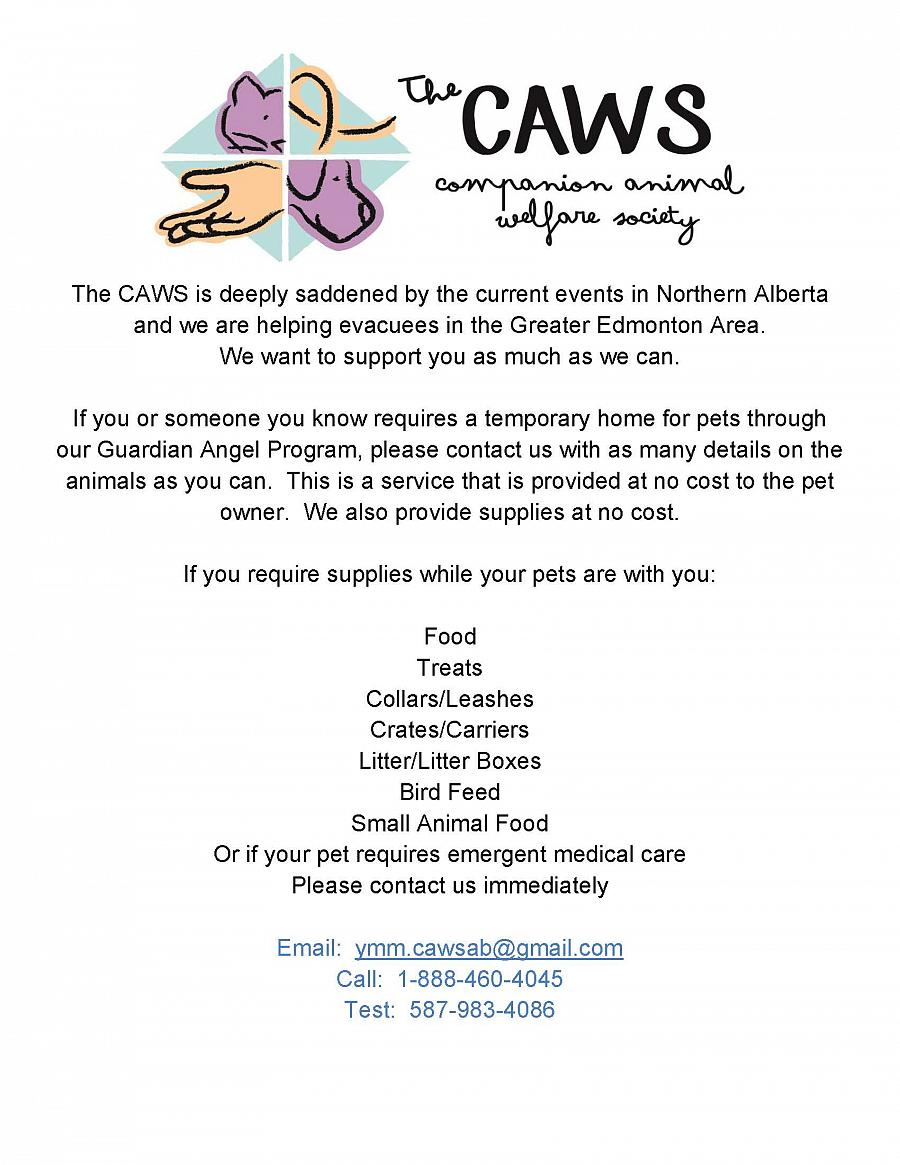 Support Stranded Pets in YMM